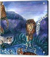 Feline Origins Acrylic Print
