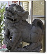 Female Chinese Guardian Lion Acrylic Print