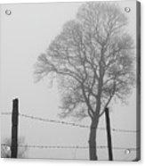 Fence And Fog Acrylic Print