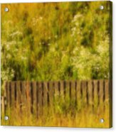 Fence And Hillside Of Wildflowers On Suomenlinna Island In Finland Acrylic Print
