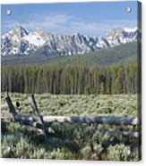 Fence And The Sawtooths Acrylic Print