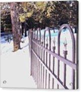 Fence Lines Acrylic Print
