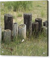 Fence Post All In A Row Acrylic Print