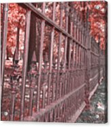 Fenced In Red Acrylic Print