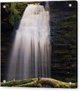 Fern Falls, Id Acrylic Print