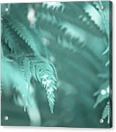 Fern Leaves Abstract 4. Nature In Alien Skin Acrylic Print
