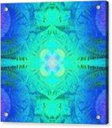 Ferns 2j Hotwax 3 Fractal Acrylic Print