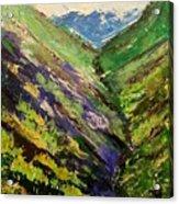 Fertile Valley Acrylic Print