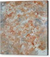 Festering  N005 Acrylic Print
