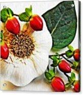 Festive Garlic Acrylic Print