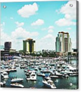 Festive Tampa Bay Acrylic Print