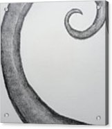 Fibonacci Spiral No.1 Acrylic Print