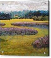 Fiddlers Ridge Marsh Acrylic Print