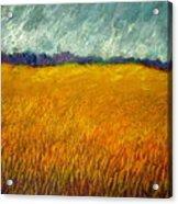 Field At Noon Acrylic Print