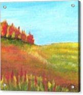 Field In Autumn Acrylic Print