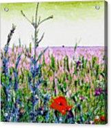 Field Notes Acrylic Print
