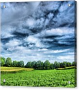 Field Of Dreams One Acrylic Print by Steven Ainsworth