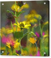 Field Of Flowers Paint Acrylic Print