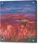 Field Of Heather Acrylic Print