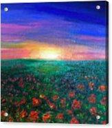 Field Of Light Acrylic Print