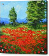 Field Of Poppies IIi Acrylic Print