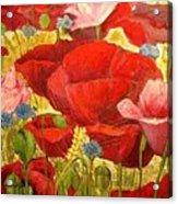 Field Poppies Acrylic Print