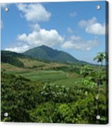 St. Kitts Fields Of Cane Acrylic Print