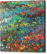 Fields Of Color Acrylic Print