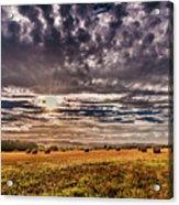 Fields Of Plenty Acrylic Print