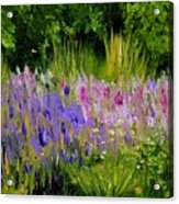 Fields Of Purple Acrylic Print