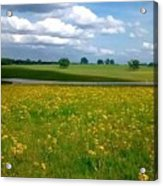 Fields Of Yellow Acrylic Print