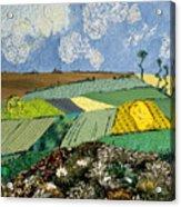Fields To Gogh Acrylic Print by Martha Ressler
