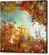 Autumn Fire Acrylic Print
