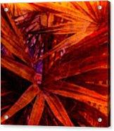 Fiery Palm Acrylic Print