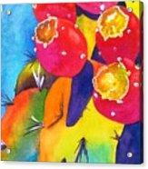 Fiesta De Fruta Acrylic Print