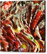 Fiesta V Acrylic Print
