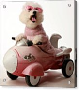 Fifi Is Ready For Take Off In Her Rocket Car Acrylic Print