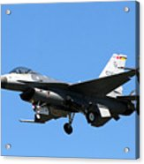 Fighter Acrylic Print