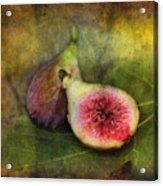 Figs Acrylic Print