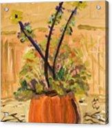 Filled Terra Cotta Vase Acrylic Print
