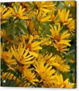 Filled With Sunflowers Vertical Acrylic Print