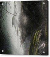 Filtered Light Acrylic Print