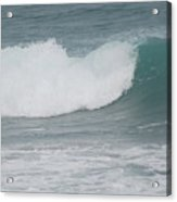 Fin Wave Acrylic Print