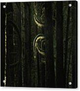 Final Light In Woods Acrylic Print