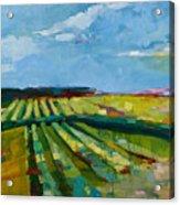 Fine Fields Acrylic Print