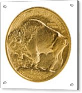 Fine Gold Buffalo Gold Coin On White Background  Acrylic Print