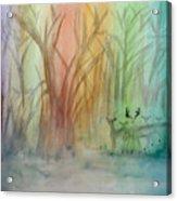 Finian's Rainbow Acrylic Print