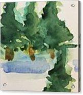 Fir Trees Acrylic Print