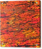 Fire 2 Acrylic Print