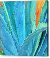 Fire And Ice 2 Acrylic Print